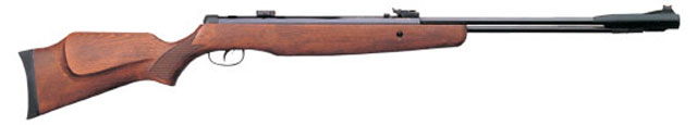 Gamo CFX ROYAL.jpg