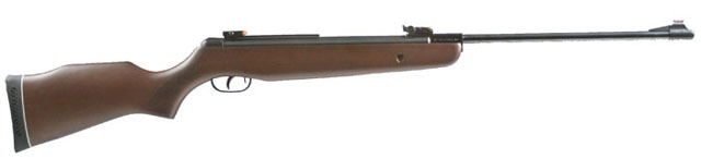 Gamo Hunter 440.jpg